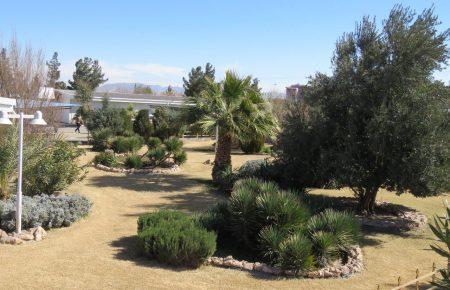 کوثر یزد ، چشمه جوشان آبادی و سر سبزی