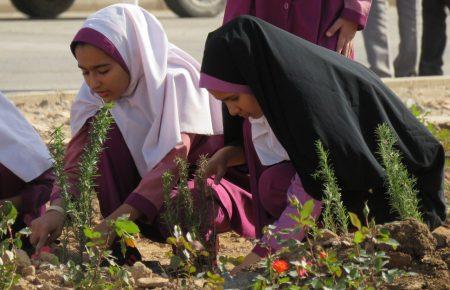 مراسم درختکاری در مجتمع کاریزلند