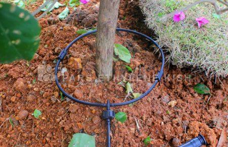 اطلاعیه پیشگیری از ترکیدگی لوله و تاسیسات آب شرب و فضای سبز