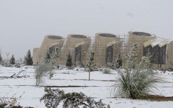 تور سفید زمستان بر سر کاریزبوم/ آذین بندی درختان مثمر با گلوله های برفی!